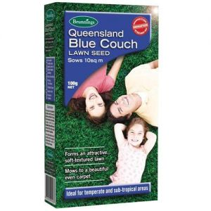 NEW BRUNNINGS BLUE COUCH 2.JPG